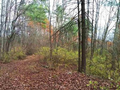 Saugerties Residential Lots & Land Accepted Offer Cts: Route 212