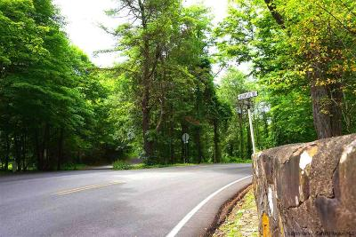 New Paltz Residential Lots & Land For Sale: 115 Dashville Road