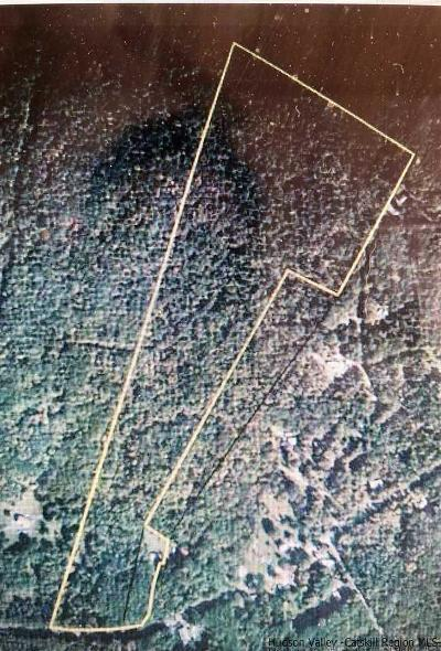 Greene County Residential Lots & Land For Sale: 531 N Lake Rd