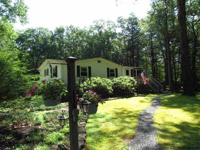 Saugerties Single Family Home For Sale: 232 Charles Hommel Road