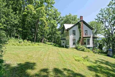Catskill Single Family Home For Sale: 220 Hamburg Road