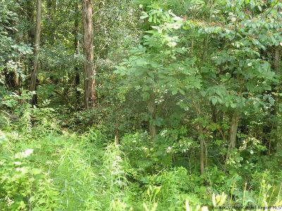 Greene County Residential Lots & Land For Sale: Tammy Trail Trail