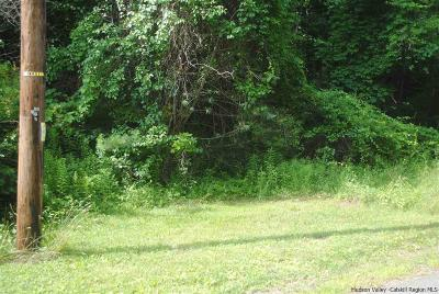 Shokan Residential Lots & Land Accepted Offer Cts: Shagbark Dr.