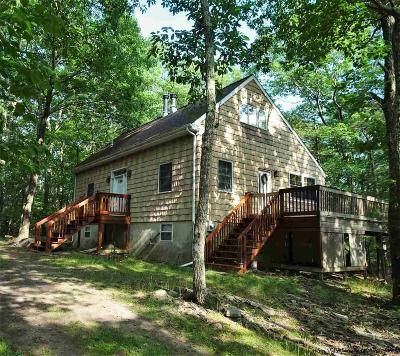 Saugerties Single Family Home For Sale: 235 Ralph Vedder Road