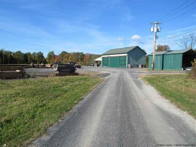 Saugerties Commercial For Sale: 12 Simulaids Drive