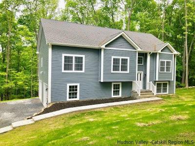 New Paltz Single Family Home For Sale: 159 N North Putt Corners Road