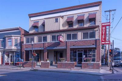 Saugerties Commercial For Sale: 217 Main Street