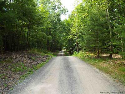 Saugerties Residential Lots & Land For Sale: Lot 2 Brink Rd/Flagstone Drive - New