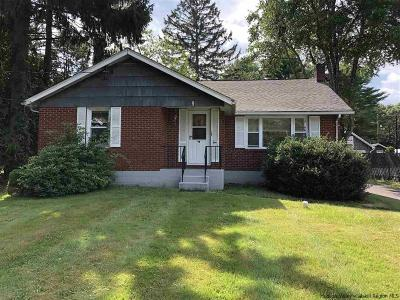 New Paltz Single Family Home For Sale: 9 N Ohioville Road