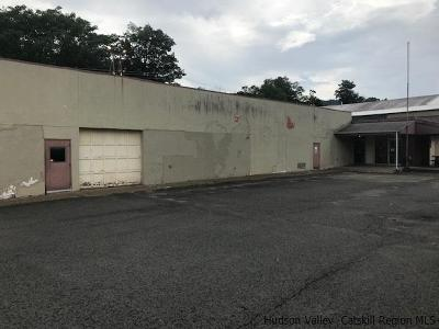 Ulster County Commercial For Sale: 46 Canal Street