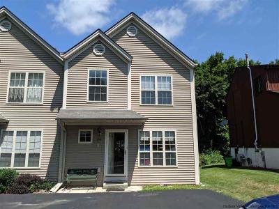 Ulster County Townhouse For Sale: 214 Sterling Place