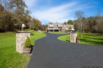 Catskill Single Family Home For Sale: 627 Green Lake Road