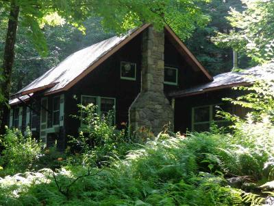 Ulster County Single Family Home For Sale: 57 Big Indian Trail