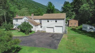 Shandaken Single Family Home For Sale: 204-208 Route 42