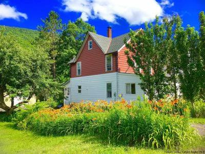 Greene County Single Family Home For Sale: 1554 Route 214