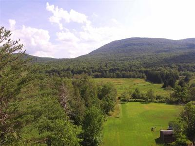 Greene County Residential Lots & Land For Sale: 2241 Route 23c