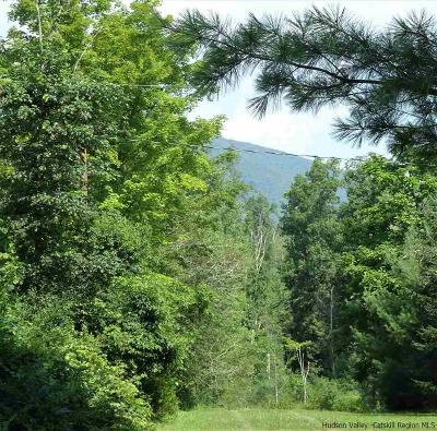 Shokan Residential Lots & Land For Sale: Tbd Rte 28 Highway