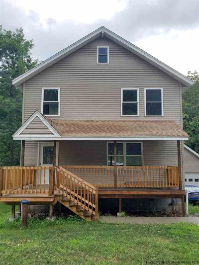 Greene County Single Family Home For Sale: 8616 Route 9w Route