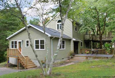 Saugerties Multi Family Home For Sale: 300 Houtman Road
