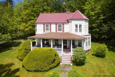 Ulster County Single Family Home For Sale: 321 Main Street
