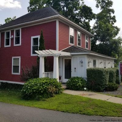 Ulster County Commercial For Sale: 22 North Main Street