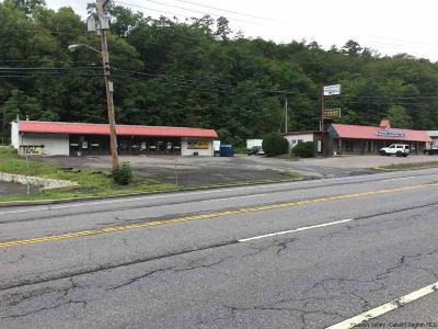 Ulster County Commercial For Sale: 615-623 Route 28