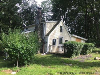New Paltz Single Family Home For Sale: 465 Plutarch Rd