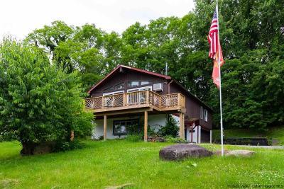 Single Family Home For Sale: 238 Tilden Street