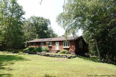 Kingston Single Family Home For Sale: 1397 Sawkill Road