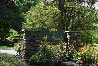Rhinebeck Townhouse For Sale: 42 Pond Dr. E.