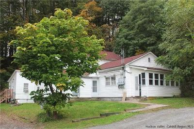 Ulster County Multi Family Home For Sale: 21 Nevins Street