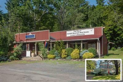 Ulster County Commercial For Sale: 3998 Route 28