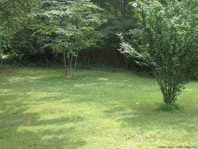 Residential Lots & Land For Sale: 273 Lewis Lane