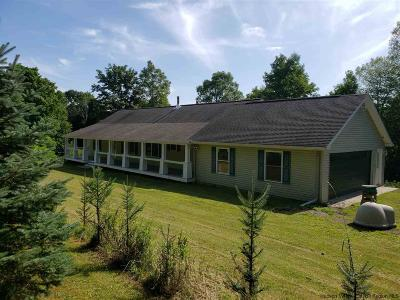 Greene County Single Family Home For Sale: 1135 County Route 67