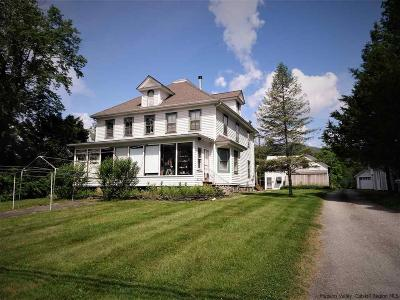 Ulster County Multi Family Home For Sale: 2968 Rte 28 Highway
