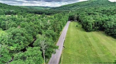 Ulster County Residential Lots & Land For Sale: 420 Route 55 Route