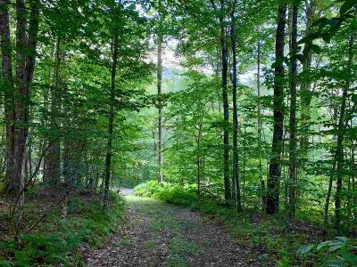 Delaware County Residential Lots & Land For Sale: Mountain Lake Road