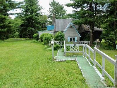Grahamsville Single Family Home For Sale: 71 Kawlija Road