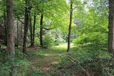 Ulster County Residential Lots & Land For Sale: 59 Loughran Lane