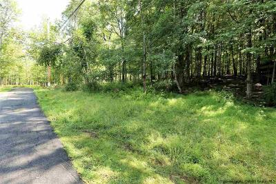 Ulster County Residential Lots & Land For Sale: Old Farm Road