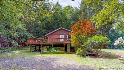 Bearsville Single Family Home For Sale: 557 Glenford Wittenberg Road