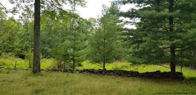 Ulster County Residential Lots & Land For Sale: 4727 Route 213