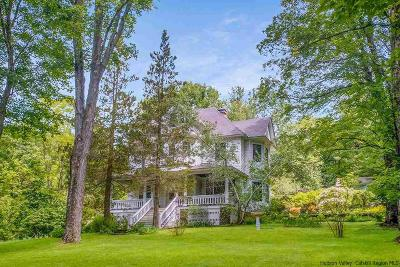 Greene County Single Family Home For Sale: 7006 23a Route