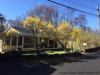 Ulster County Single Family Home For Sale: 120 Lake Rd