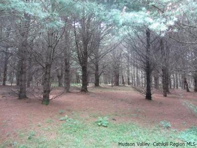 Ulster County Residential Lots & Land For Sale: T/B/D Irish Cape Road