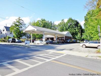 Ulster County Commercial For Sale: 39 Mill Hill Road