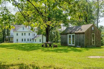 Ulster County Single Family Home For Sale: 56 Mountaintop