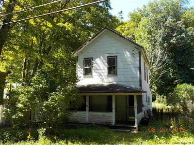 Ulster County Single Family Home For Sale: 63 Broadstreet Hollow Road