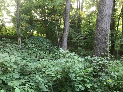 Saugerties Residential Lots & Land For Sale: Underwood Street