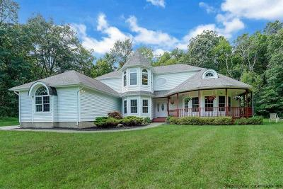 Ulster County Single Family Home For Sale: 63 Teakettle Street